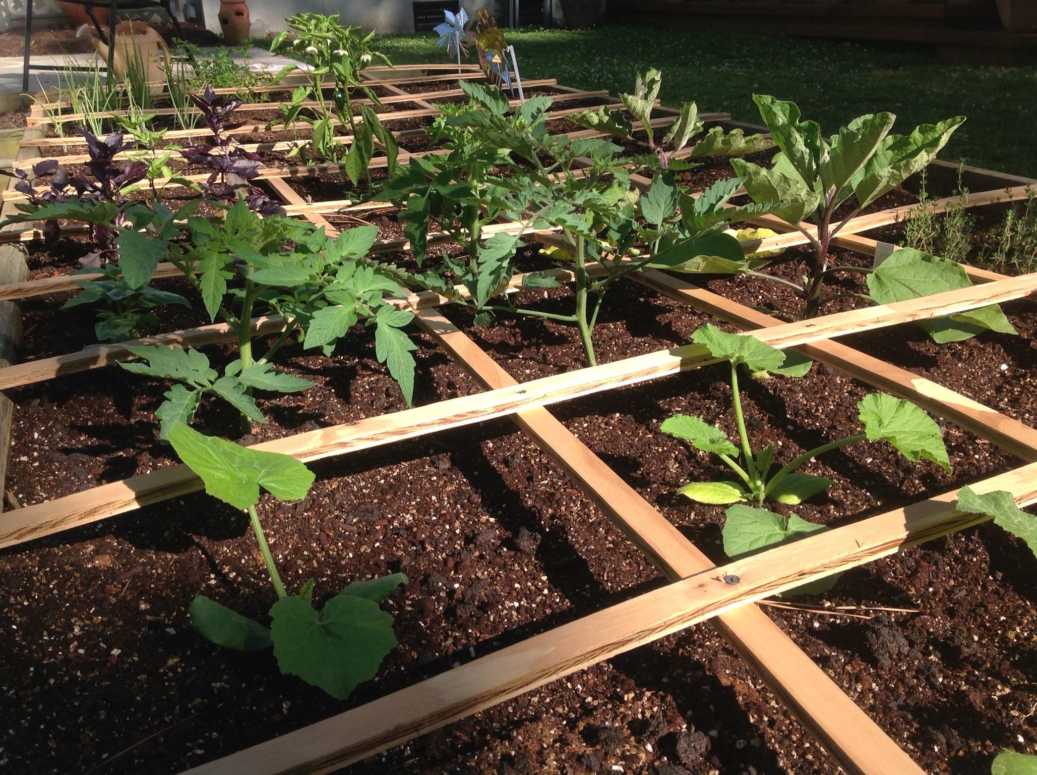 Square Foot Gardening   The Kitchen Island